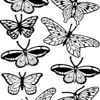 Butterfly Variety Etching & Sandblasting Sticker Sheet