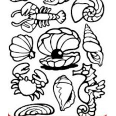 Sea Bottom Etching & Sandblasting Sticker Sheet