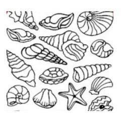 Assorted Shells Etching & Sandblasting Sticker Sheet