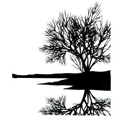 Tree Reflection Enamel Fusible Decal
