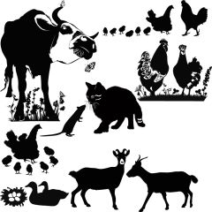 Farm Animals Enamel Fusible Decal Sheet