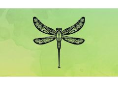 Ornate Dragonfly Simple Screen™ Ready to Use Stencil