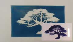 Simple Screen™  Pre-burned Mighty Tree 2 Silhouette Design for Screen Printing & Powder Printing
