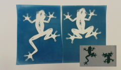 Simple Screen™  Pre-burned Tree Frog Design for Screen Printing & Powder Printing