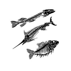 Powder or Airbrush Stencil-Fish Fossils