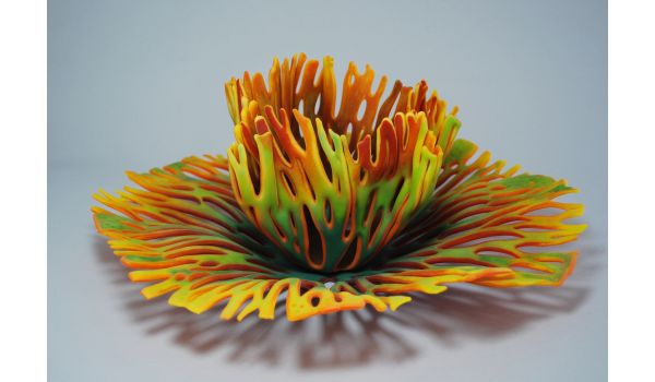 Video Tutorial: Nature's Wonders II: Further Explorations in Powders  w/ Glenda Kronke
